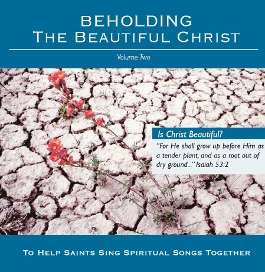 Beholding the Beautiful Christ